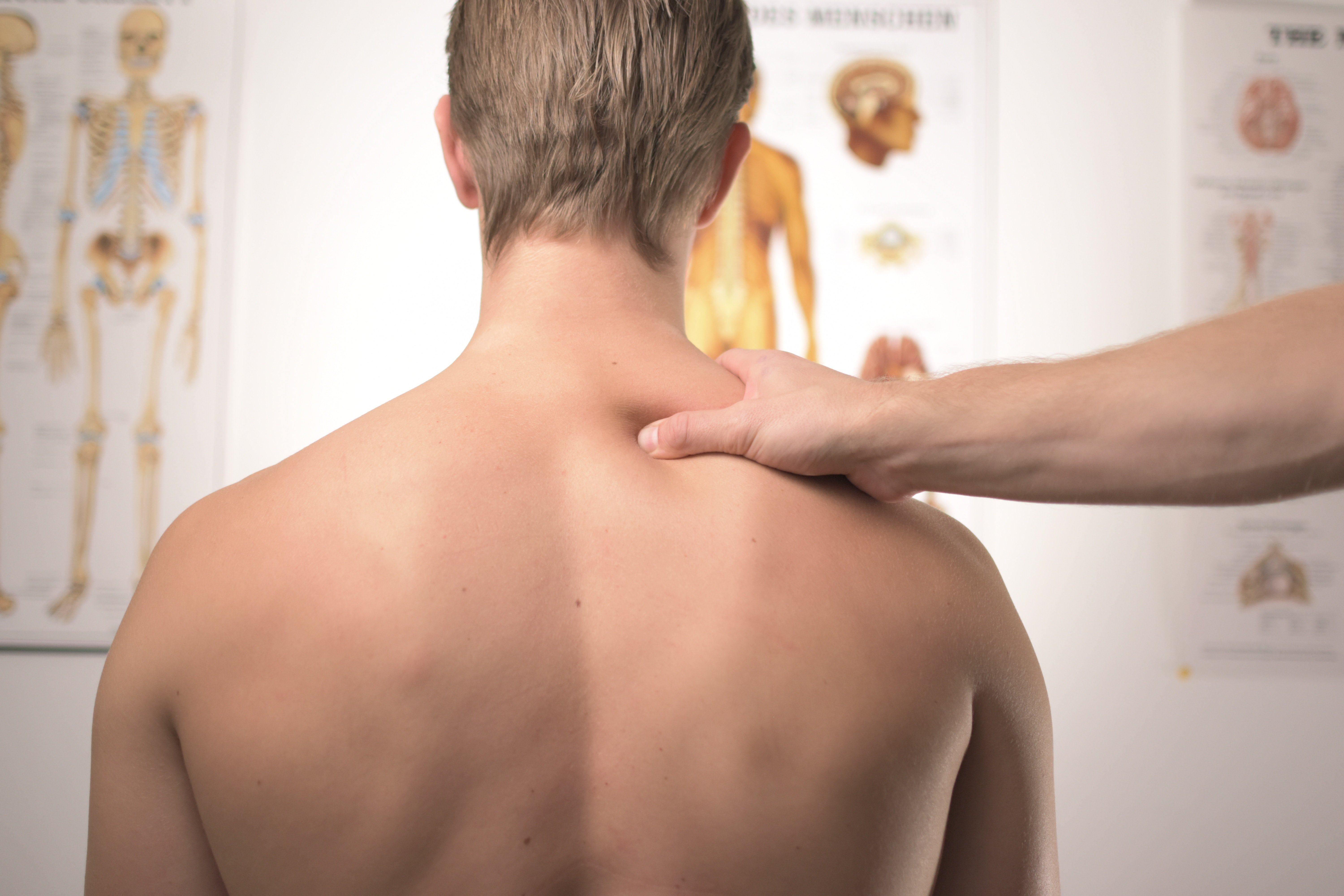 Back - Chiropractor Adjustment - Treatment